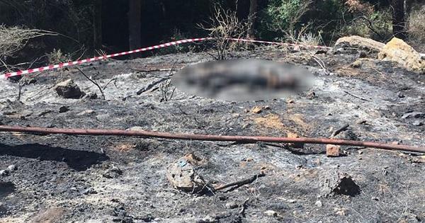 بالصورة/ معلومات جديدة عن الجثة في حريق عين سعادة..الرجل في العقد السادس من العمر وترجيح فرضية الانتحار