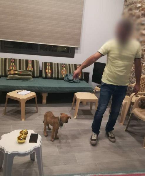 بالصور/ بعد انتشار صورة سحل الكلبة في الفرزل قوى الأمن توضح: كان ينوي أخذها إلى الطبيب البيطري