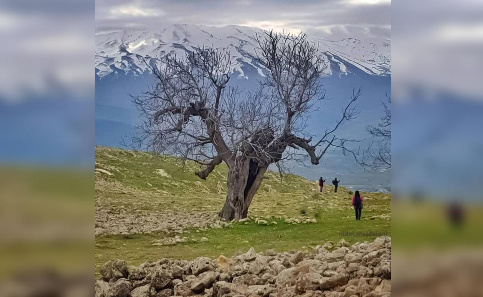 خبير الطقس الأب ايلي خنيصر: شتاء لبنان هذا العام واعد بالخيرات لهذا السبب!