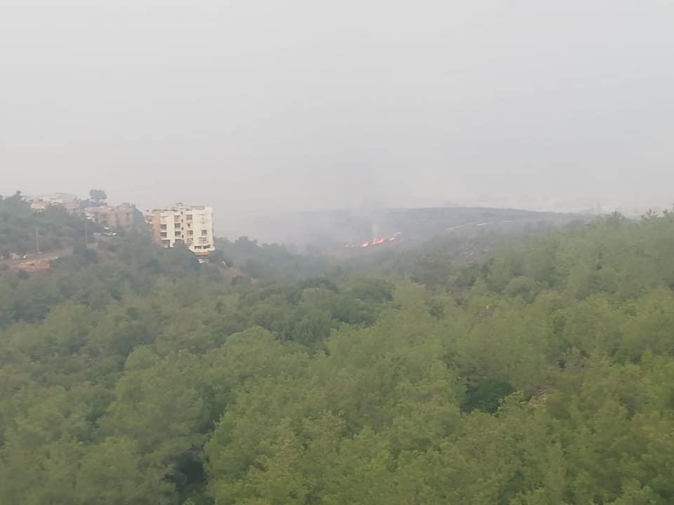 رئيس بلدية بعورتا: تجدد الحريق في البلدة صباحا ونناشد المعنيين التدخل