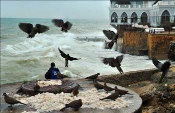 العاصفة تصل إلى ذروتها اليوم: أضرار في الطرق والأشجار وتحذيرات للمزارعين والصيادين