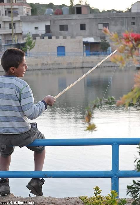 ملايين الاسماك تغزو بركة كونين .. و الصيد  ينتشر