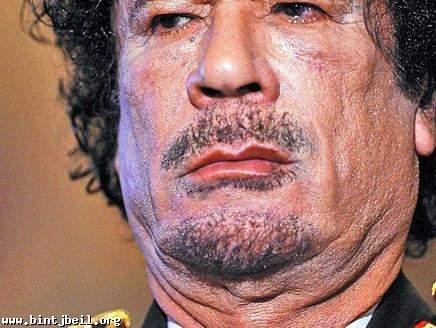 القذافي ليست لديه الجرأة لينتحر وقد يكلف أحد المقربين منه بقتله
