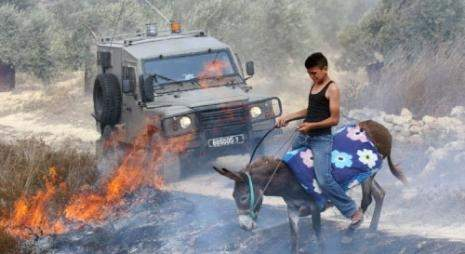 الاحتلال يعدّ لـ«بذور الصيف» بتدريب المستوطنين وتسليحهم