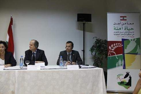 """تواقيع جديدة تحارب """"عنقوديات"""" لبنان... حتى الـ 2015"""