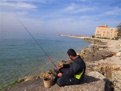 أسماك فلسطين في صور