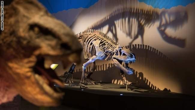 هل هامت الديناصورات في أرض العرب؟