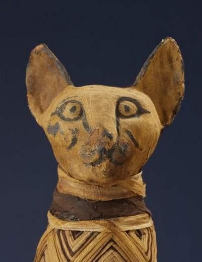 ثلث المومياوات الحيوانية في مصر مزيّفة!