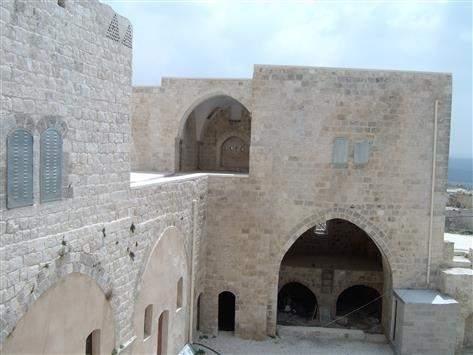 حمامة فلسطين البيضاء تستصرخ السلطة للحفاظ على تراثها