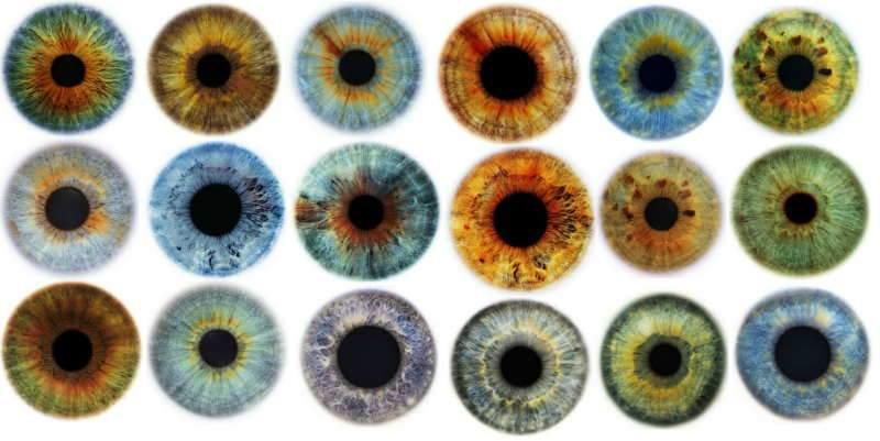 لون العيون: وسيلة لمعرفة الشخصية و تشخيص الأمراض