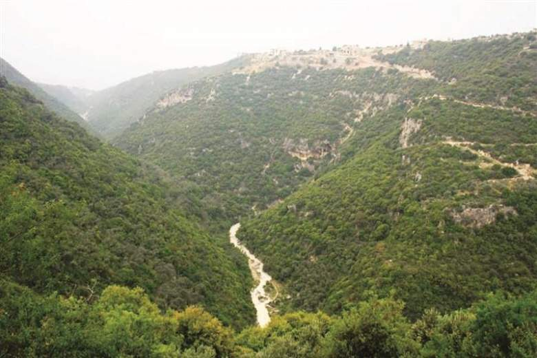 وادي المدفون وجسرها إلى الواجهة... سياحياً