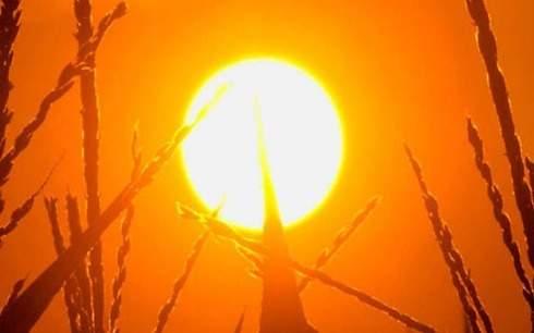 موجة حر تبدأ الأربعاء لتبلغ الذروة طوال الأسبوع المقبل