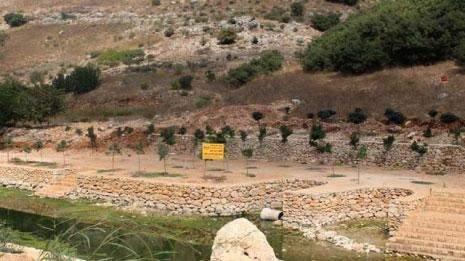 محمية وادي الحجير في خطر: وزارة البيئة ضد البيئة