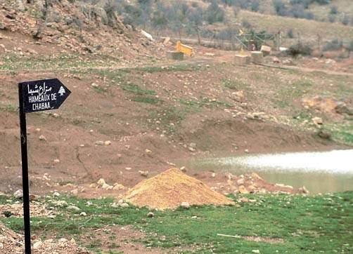 مناورة للعدو داخل مزارع شبعا المحتلة