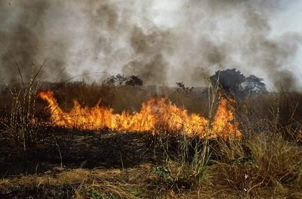 حريق في ضهر النفيسة في عكار