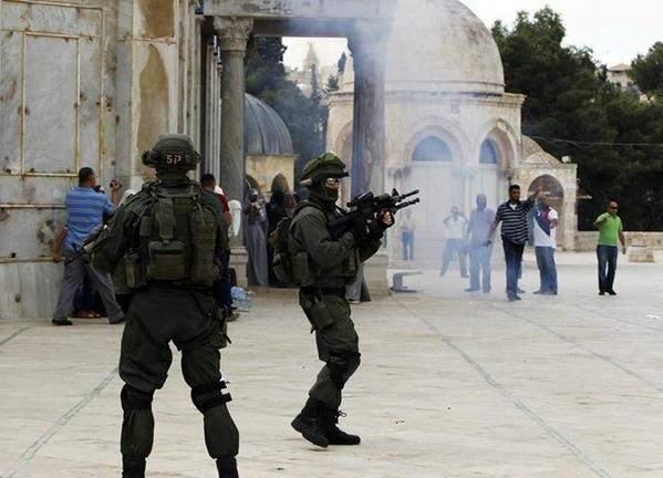 فلسطين أيها العرب ...الأقصى يا مسلمون!