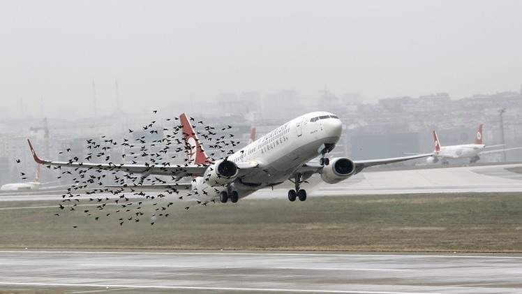 رحلة رعب من بلجيكا إلى بروكسل.. العالم ينجو من كارثة جوية جديدة.