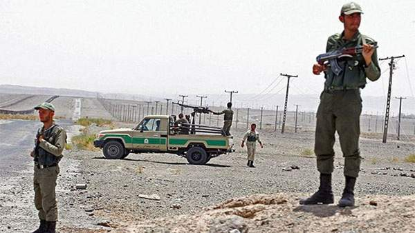 إيران تعتقل خليتين إرهابيتين