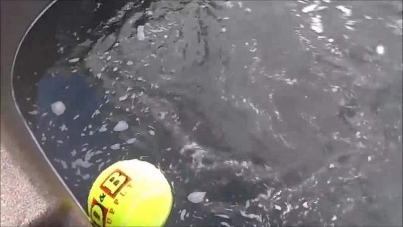 بالفيديو.. ترك كرة تنس في الماء طوال الليل وعندما رفعها في الصباح كانت المفاجأة!