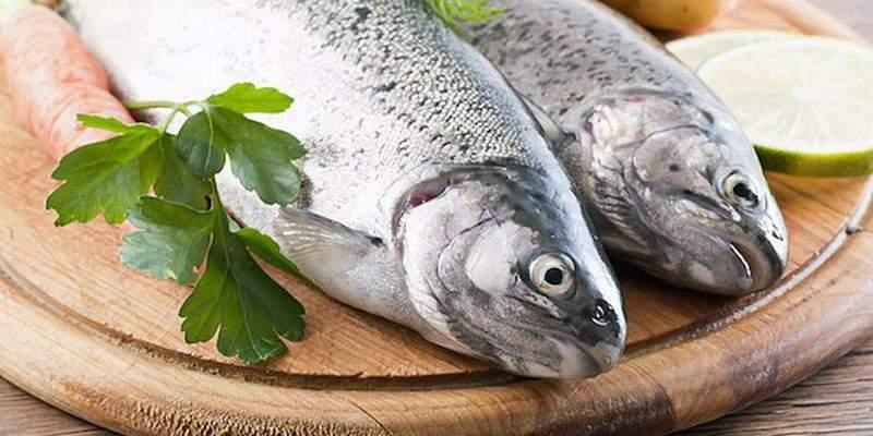 تناول الأسماك يقلل فرص الإصابة بالعمى!