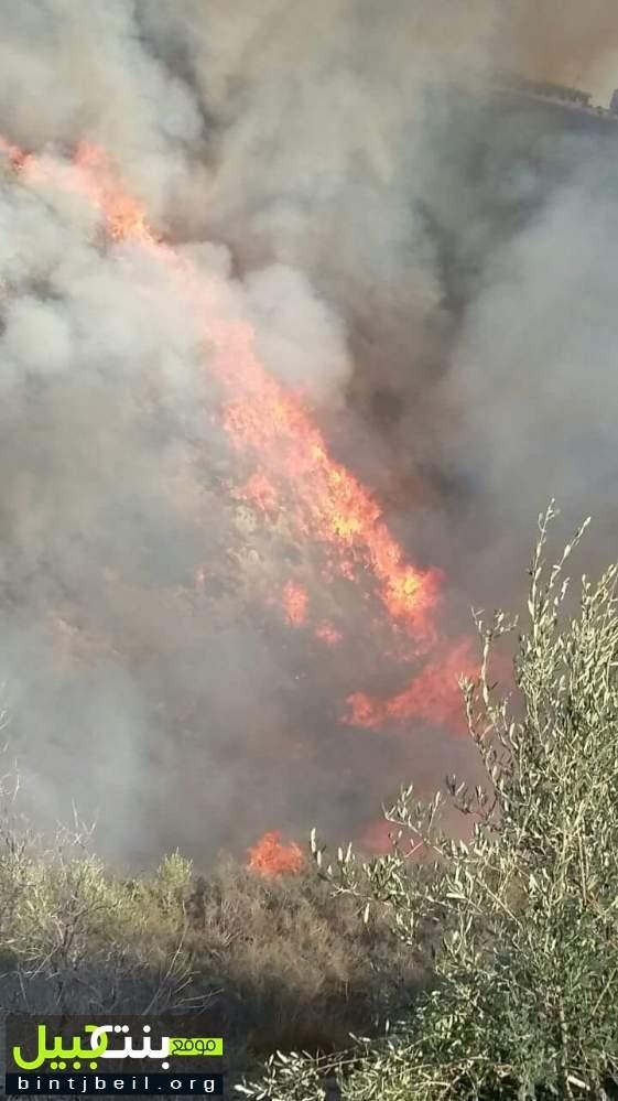 حريق في منطقة حرجية واقعة في خراج بلدتي معروب وجناتا