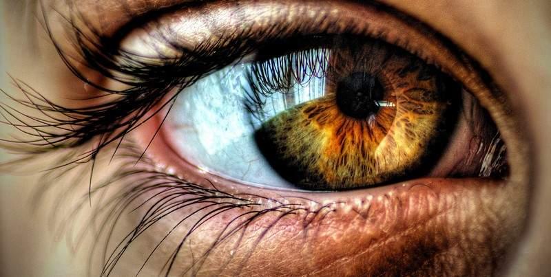 """""""جلوكوما"""".. مرضٌ يضرب العين ويُفقد البصر!"""