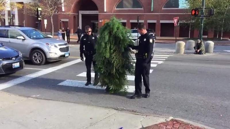 """بالفيديو - القبض على """"شجرة متحركة"""" عرقلت المرور!"""