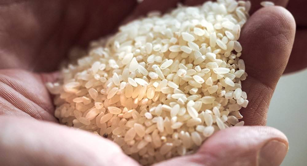 إحذروا من الأرز البلاستيكي