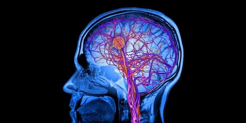 هذه المادة في الدماغ تجعلنا ننسى الأوقات السعيدة بسرعة!