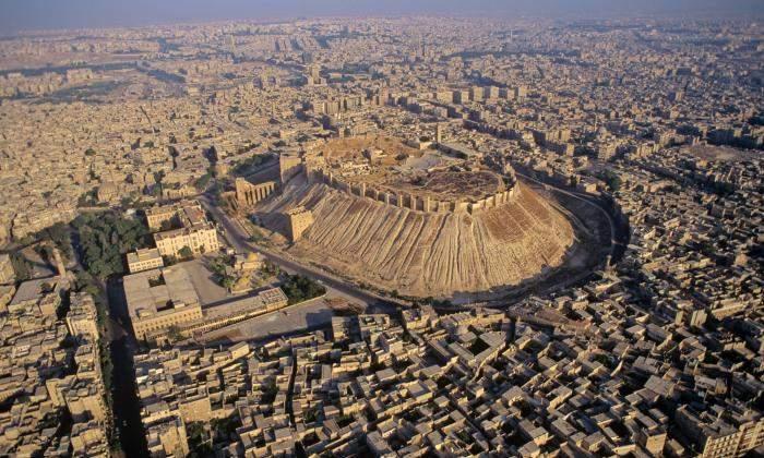 أثمرت دماءُ الشهداء نصراً في حلب