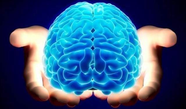 ما هو العمر الحقيقي لنضج مخ الإنسان؟