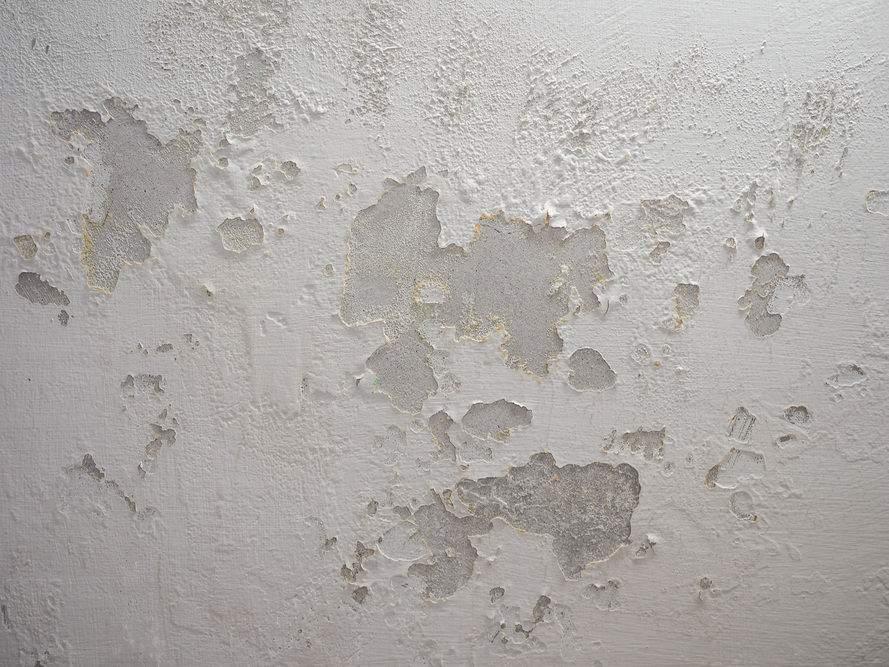 طريقة فعالة للقضاء على رطوبة الجدران نهائياً!