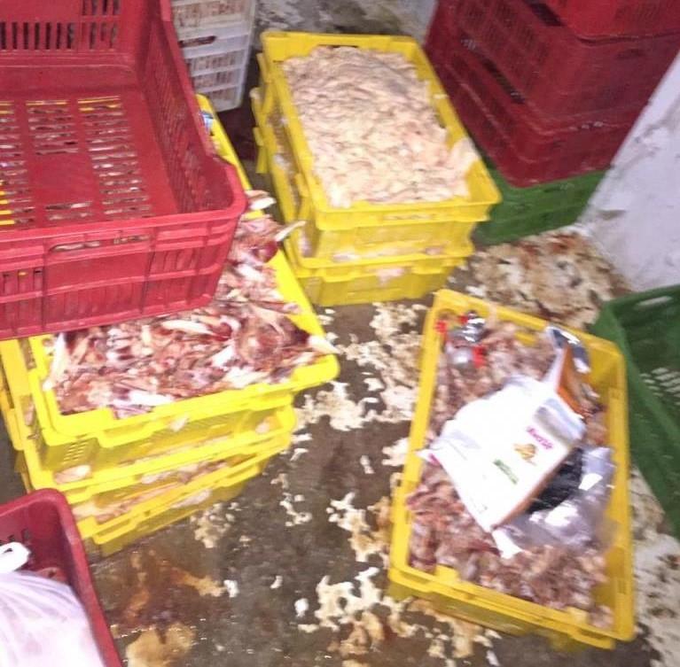 بعد ورود شكاوى...إقفال مستودع لبيع لحوم الدجاج بالشمع الاحمر ومصادرة كميات من اللحوم غير المطابقة للشروط الصحية في الزاهرية