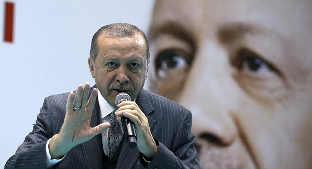 """""""ليست طائرتي بل للجمهورية التركية""""... أول تصريح من أردوغان بعد ضجة """"هدية أمير قطر"""""""