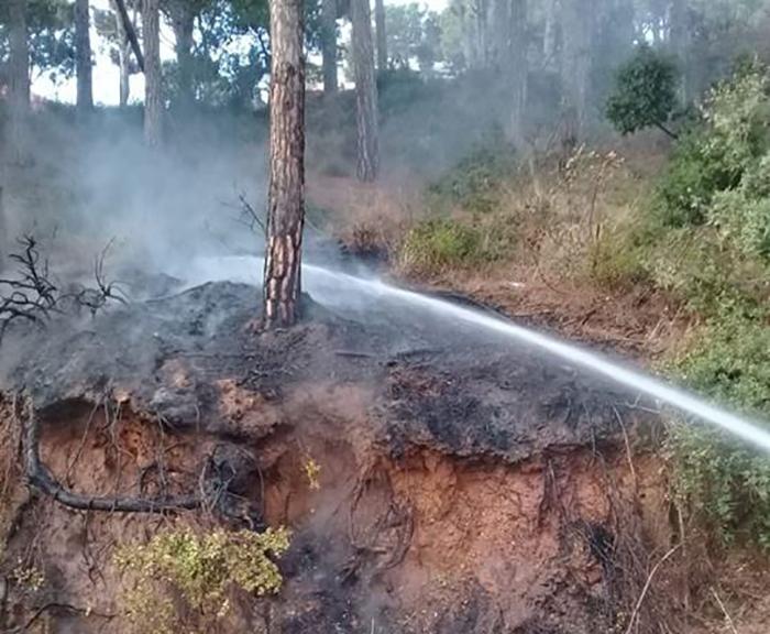 بعد العثور على جثة طفل اثر إخماد حريق...رئيس بلدية عين سعادة: الجيش يحقق بالحريق ولم تعرف هوية جثة الطفل