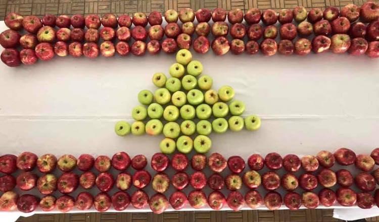مدير عام وزارة الزراعة بيوم التفاح اللبناني: البلد الذي لا يريد أن نصدر إليه إنتاجنا لن نستورد منه
