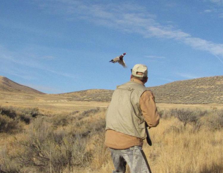 موسم الصيد يبدأ غداً ويستمر حتى 15 شباط...وزارة البيئة وافقت على 4090 رخصة