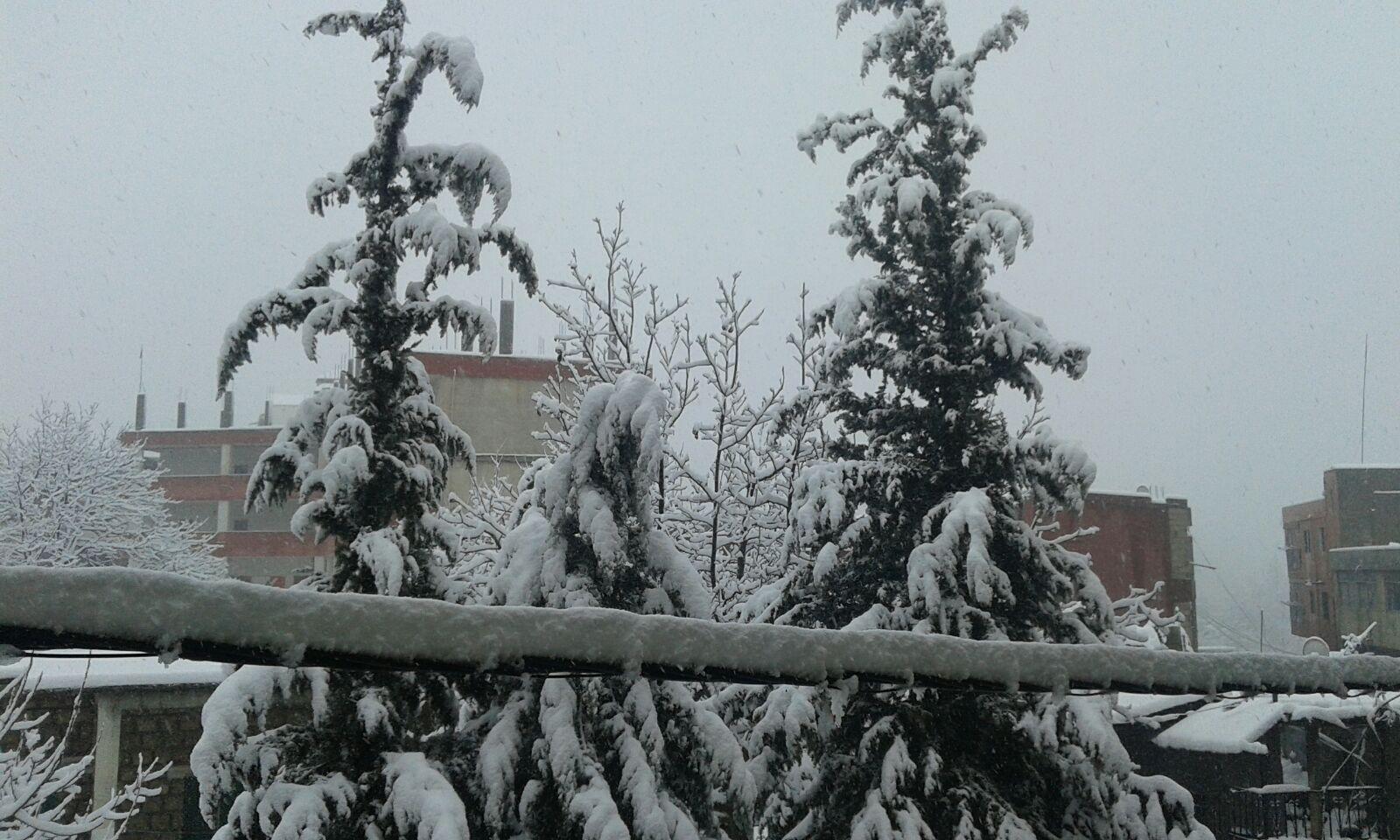 طقس لبنان... أمطار ورياح وثلوج على 1800 متر!