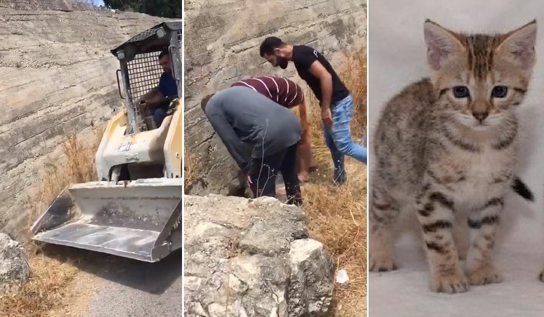 بالفيديو/ في لفتة انسانية..مجموعة من الأهالي انقذوا قطة صغيرة سقطت في بئر قديم في زبقين