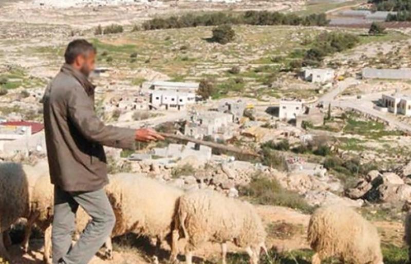 كان يرعى الماشية في منطقة جبل السدانة...دورية إسرائيلية حاولت خطف راعٍ في شبعا!